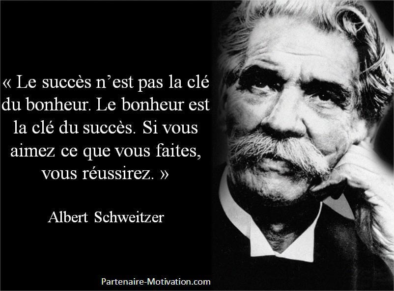 albert schweitzer citation